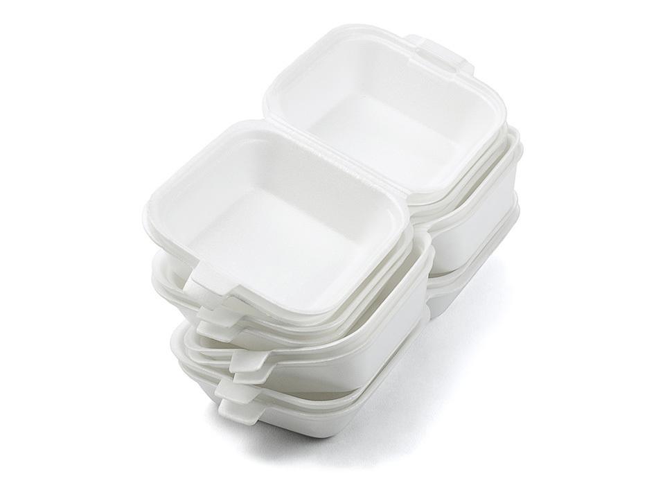 Foam Disposables Industry